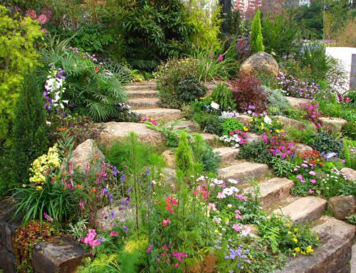 How To Start A Garden – The Ultimate Guide